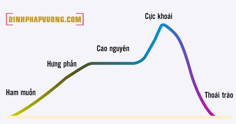 Biểu đồ mô tả quá trình quan hệ