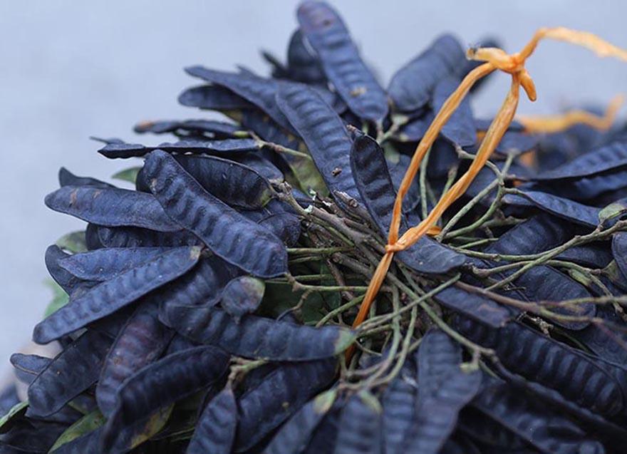 Bồ kết là một nguyên liệu thiên nhiên giúp tóc óng mượt và chắc khoẻ